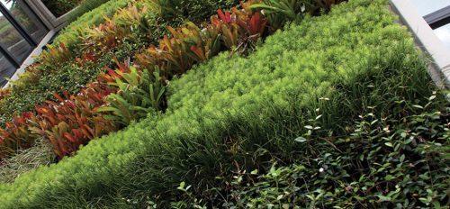 Jardinesverticales archivos arquitexto for Empresas de paisajismo
