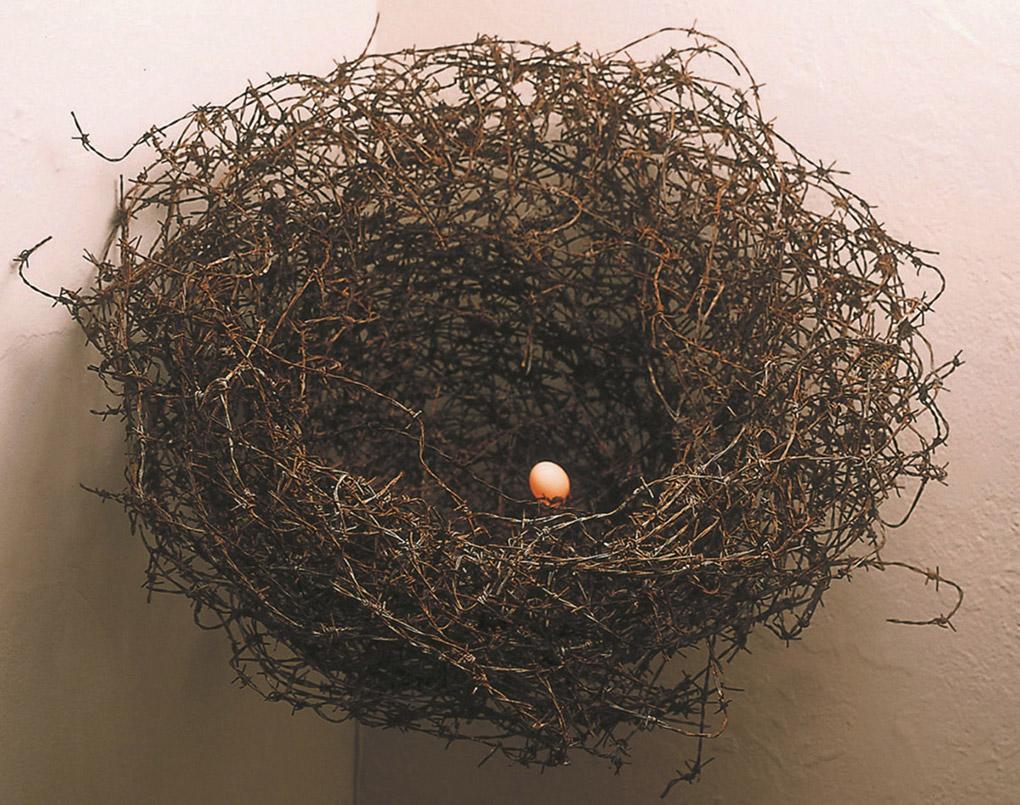 ESCUDO (2001). Escultura-instalación. Alambre de púas, bombilla halógeno y huevo en resina. 68 cm x 65 cm x 51 cm